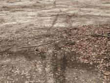 Boswachter Jeroen baalt: heidegebied in Hezingen wordt gebruikt als crossbaan
