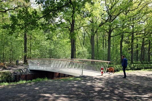 Nieuwe voetgangersbruggetjes in de stad