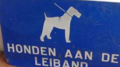 Nieuw reglement in de maak: honden overal aan de leiband