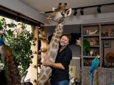 Erwin werkt met opgezette dieren: 'Ik vind er niks zieligs aan. Het vlees in de supermarkt, dat is pas zielig'