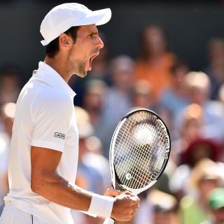 Djokovic beleeft wederopstanding na champagnetennis tegen Nadal, en verslaat Anderson in finale