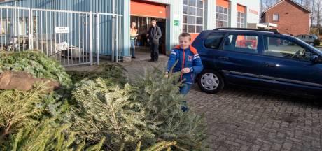 Lemelerveldse jeugd verzilvert kerstbomen