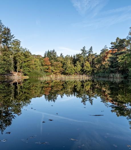 Natuur in bos Birkhoven droog én veerkrachtig