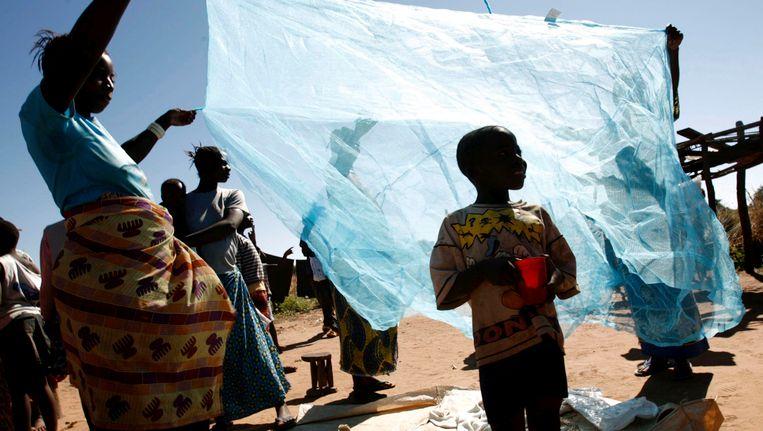 Klamboes in Zambia Beeld EPA