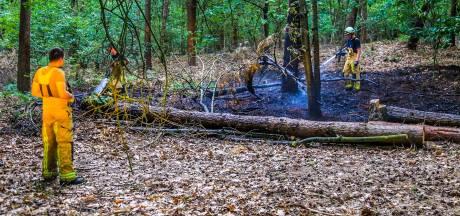 Twee kleine bosbranden woeden vlakbij Berkendonk in Helmond, brandweer heeft ze snel onder controle