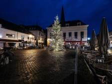 Tienduizenden lichtjes in Zevenaarse kerstboom: 'Supermooi, dit geeft sfeer'