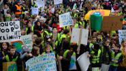 Burgerplatform Klimaat Klein-Brabant zoekt hulp voor organisatie 'klimaatdag'