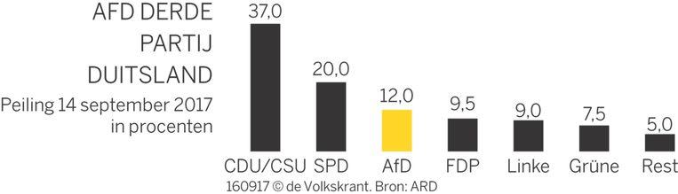 Volgens recente peilingen zou het AfD de derde partij van Duitsland kunnen worden. Beeld de Volkskrant