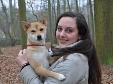 """Dierenfotografe zet zich in voor vzw's: """"Ik onthoud beter dieren dan mensen"""""""