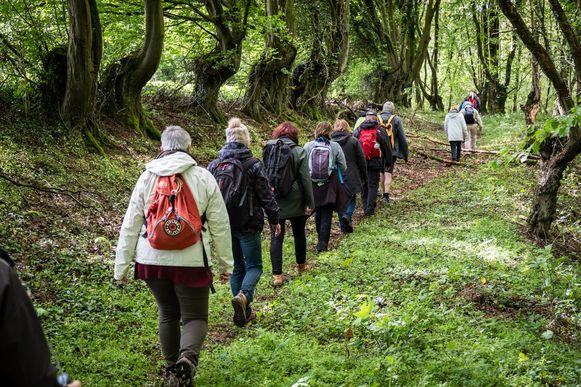 In de wandelclubs zijn vijftigers en zestigers in de meerderheid, maar ook de millennial heeft de wandelschoenen ontdekt als 'onthaastingsmiddel'.