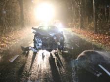 Automobilist botst op drie koeien in Renkum