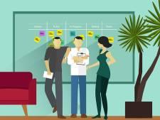 'Agile is géén bewezen succesformule'