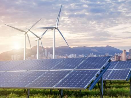 Schouwen-Duiveland ziet beren op weg richting energieplannen