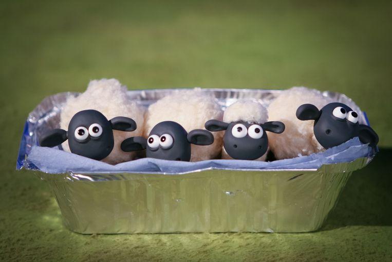 Shaun-schapen achter de schermen Beeld Dave Alex Riddett