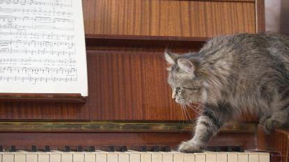 Jazzpiano leren spelen