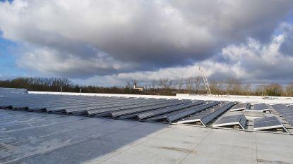 Zonnepanelen op dak nieuwe brouwerij goed voor één vijfde verbruik van de site