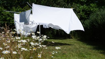 Waarom wasgoed dat buiten gedroogd wordt zo heerlijk ruikt