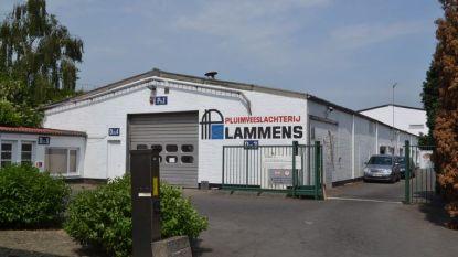 Bijna witte rook voor pluimveeslachterij Lammens?