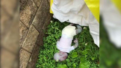 Verschrikkelijke ontdekking krijgt bizarre wending: dode baby blijkt pop te zijn