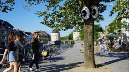IN BEELD. Hier vind je de rollende ogen in Kortrijk