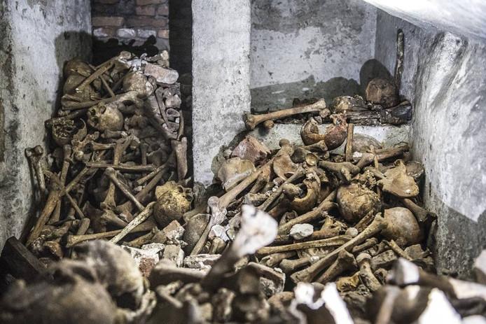 Onder de vloer van de Stevenskerk is ene verzamelgraf ontdekt.