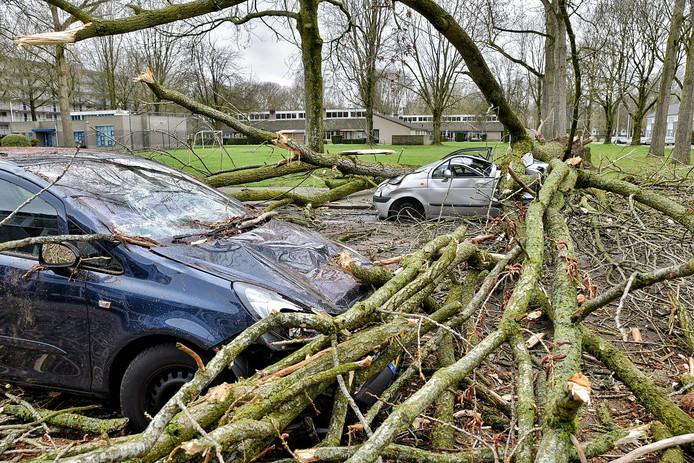 Familie verliest twee auto's in een klap in Tilburg door de storm.