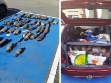 Bulgaren gepakt met kofferbak vol 'gestolen' katalysatoren in Zwolle