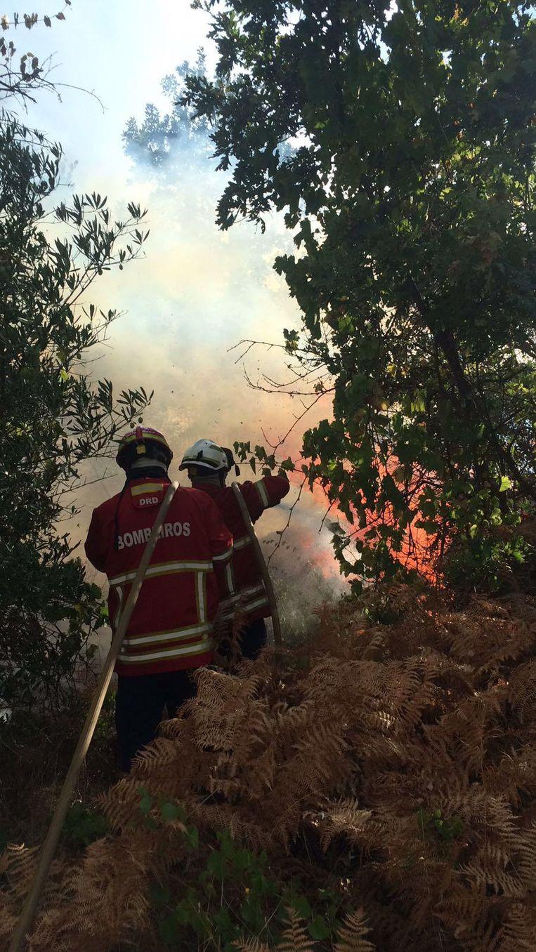Op de eerste dag was het al aanpoten om bosbranden te blussen.
