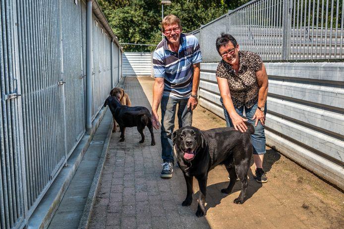 Hennie Biemans en haar man Tiny Biemans tussen de honden.  Ze runnen met de familie al 25 jaar dierenpension Mon Ami in Volkel.