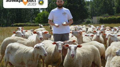 """Vlaamse schapenplattekaas van Schapenmelkerij Bosschelle: """"Als 18-jarige met 20 dieren begonnen, nu heb ik er 110"""""""