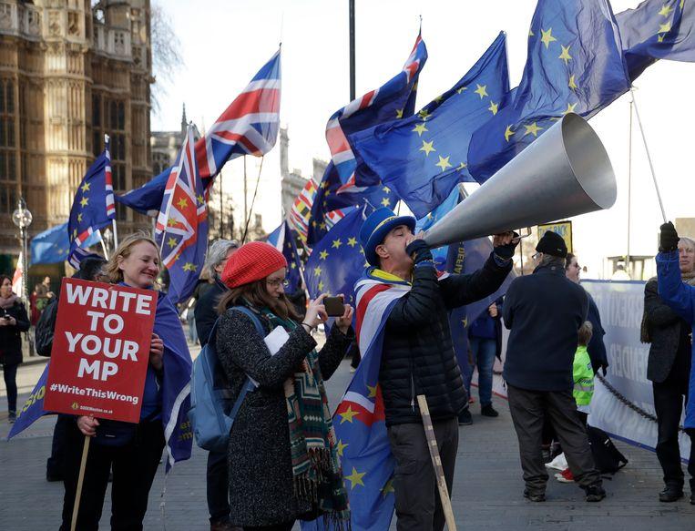 Demonstranten voor Europa. Beeld AP
