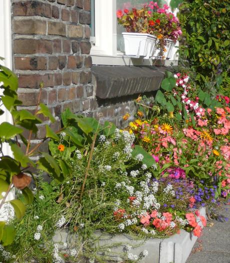 Gevel- en boomtuintjes zijn welkom in Vlissingen
