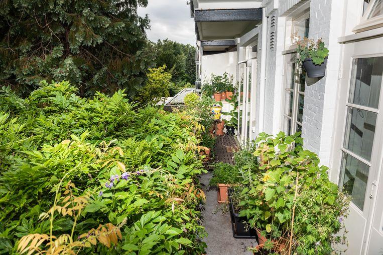 Caspars balkon op 5 augustus. Beeld Simon Lenskens