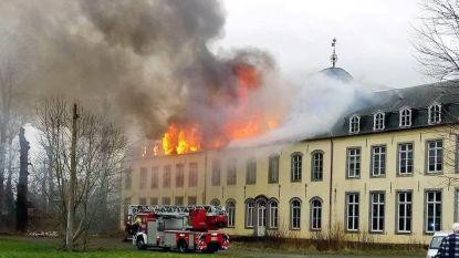 Zware brand legt kasteel van Viane in de as
