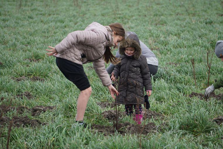 Tijdens de boomplantactie in het stadsrandbos van Oostende werden zowat 2.500 boompjes geplant. Heel wat families tekenden present.