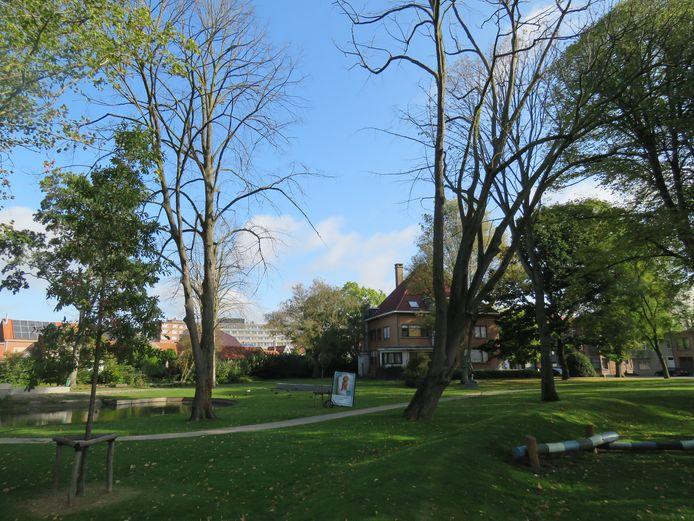 Verschillende bomen in park Van De Walle staan er vrij doods bij