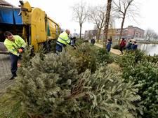 Veel minder kerstbomen ingeleverd