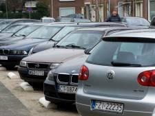 Ruim vijf keer zoveel Polen gevestigd in Rivierenland