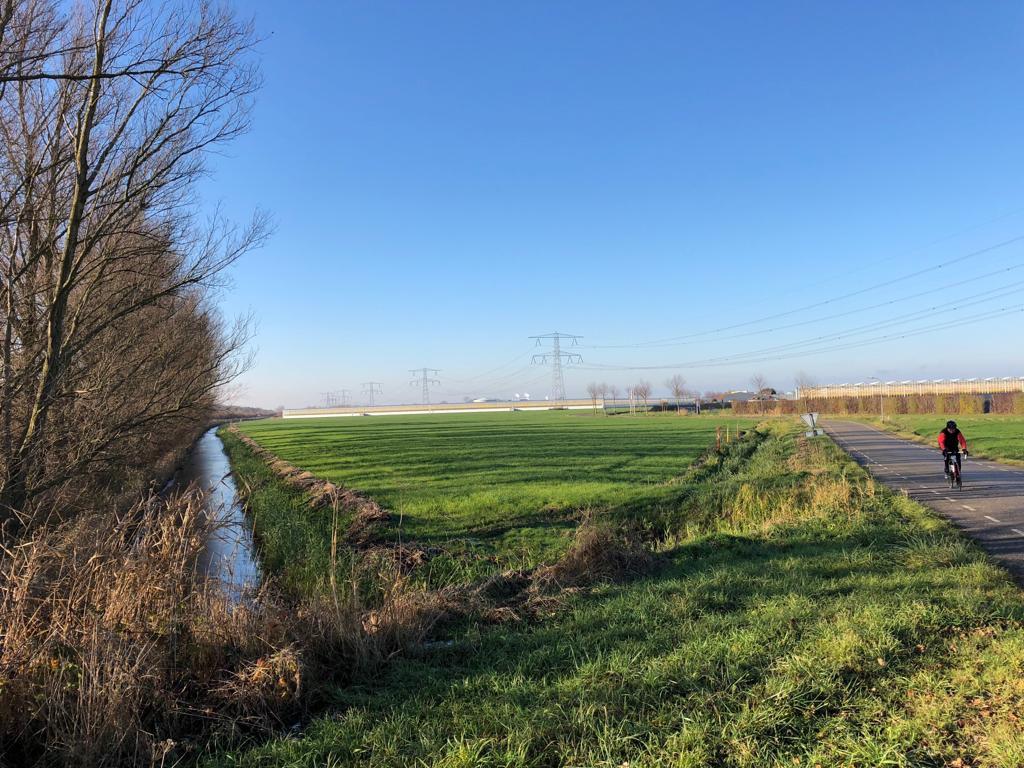 Het driehoekige perceel waar Engie in 2019 een biocentrale wil bouwen ligt ingeklemd tussen de Oude Rijksweg en de Bathpolderweg (rechts).