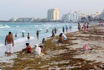 """Stranden van Mexico bedolven onder stinkend zeewier: """"De geur van rotte eieren"""""""