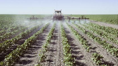 """Europese Commissie """"kiest kant van industrie"""" en buigt voor pesticidelobby"""