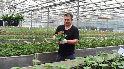 """Gezellig druk in tuincentra en doe-het-zelfzaken: """"De klanten verdienen een pluim voor hun discipline"""", zegt Tony Vannerum"""