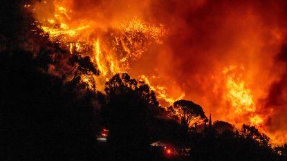 Europees Milieuagentschap waarschuwt voor overstromingen, droogtes en bosbranden