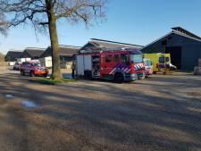 Man overleden na val in gierput in Borculo
