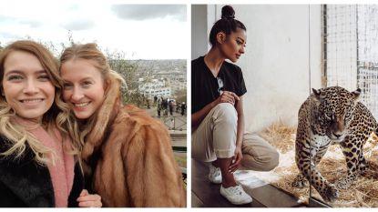 SHOWBITS. Shay Mitchell tussen de katachtigen en Tinne Oltmans bezoekt Parijs