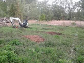 Herstel van uniek kalkmoeras in Meldert