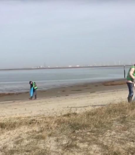 Eindelijk krijgt Hoofdplaat na 10 jaar een nieuw strand