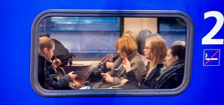 Treinverkeer tussen Eindhoven en Boxtel korte tijd gestremd door bermbrand