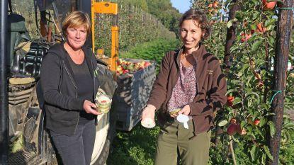 Fruitboerinnen maken krokante chips van appels