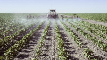 Alle Belgische kinderen zijn blootgesteld aan insecticiden